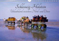 Schleswig-Holstein, Urlaubsland zwischen Nord- und Ostsee (Wandkalender 2018 DIN A4 quer) Dieser erfolgreiche Kalender wurde dieses Jahr mit gleichen Bildern und aktualisiertem Kalendarium wiederveröffentlicht.