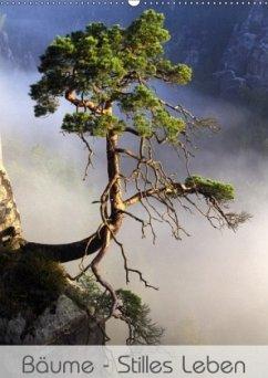 Bäume - Stilles Leben (Wandkalender 2018 DIN A2 hoch) Dieser erfolgreiche Kalender wurde dieses Jahr mit gleichen Bildern und aktualisiertem Kalendarium wiederveröffentlicht.