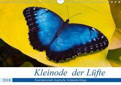 Kleinode der Lüfte - Faszinierende tropische Schmetterlinge (Wandkalender 2018 DIN A4 quer) Dieser erfolgreiche Kalender wurde dieses Jahr mit gleichen Bildern und aktualisiertem Kalendarium wiederveröffentlicht.