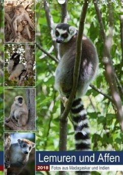 Lemuren und Affen - Fotos aus Madagaskar und Indien (Wandkalender 2018 DIN A3 hoch) Dieser erfolgreiche Kalender wurde dieses Jahr mit gleichen Bildern und aktualisiertem Kalendarium wiederveröffentlicht.