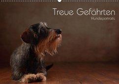 Treue Gefährten - Hundeportraits (Wandkalender 2018 DIN A2 quer) Dieser erfolgreiche Kalender wurde dieses Jahr mit gleichen Bildern und aktualisiertem Kalendarium wiederveröffentlicht.