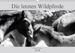 Die letzten Wildpferde Exmoor Ponys (Wandkalender 2018 DIN A3 quer) Dieser erfolgreiche Kalender wurde dieses Jahr mit gleichen Bildern und aktualisiertem Kalendarium wiederveröffentlicht.
