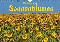 Ein Jahr lang Sonnenblumen (Wandkalender 2018 D...