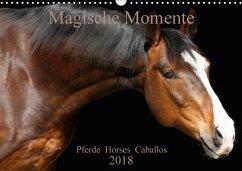 Magische Momente - Pferde Horses Caballos (Wandkalender 2018 DIN A3 quer)