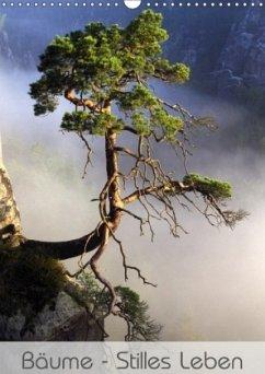 Bäume - Stilles Leben (Wandkalender 2018 DIN A3 hoch) Dieser erfolgreiche Kalender wurde dieses Jahr mit gleichen Bildern und aktualisiertem Kalendarium wiederveröffentlicht.