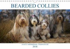 BEARDED COLLIES 2018 (Wandkalender 2018 DIN A4 quer) Dieser erfolgreiche Kalender wurde dieses Jahr mit gleichen Bildern und aktualisiertem Kalendarium wiederveröffentlicht. - Mirsberger, Annett