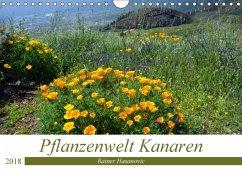 Pflanzenwelt Kanaren (Wandkalender 2018 DIN A4 quer) Dieser erfolgreiche Kalender wurde dieses Jahr mit gleichen Bildern und aktualisiertem Kalendarium wiederveröffentlicht.