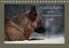Faszinierende Augenblicke mit dem Deutschen Schäferhund (Tischkalender 2018 DIN A5 quer) Dieser erfolgreiche Kalender wurde dieses Jahr mit gleichen Bildern und aktualisiertem Kalendarium wiederveröffentlicht.