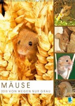 Zauberhafte Mäuse: Von wegen nur Grau (Wandkalender 2018 DIN A2 hoch) Dieser erfolgreiche Kalender wurde dieses Jahr mit gleichen Bildern und aktualisiertem Kalendarium wiederveröffentlicht.