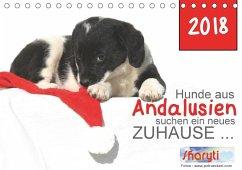 Hunde aus Andalusien suchen ein neues Zuhause ... (Tischkalender 2018 DIN A5 quer)