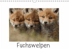 Fuchswelpen (Wandkalender 2018 DIN A4 quer) Die...