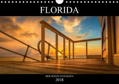 Florida. Der Sonne entgegen. (Wandkalender 2018 DIN A4 quer) Dieser erfolgreiche Kalender wurde dieses Jahr mit gleichen Bildern und aktualisiertem Kalendarium wiederveröffentlicht.