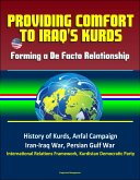 Providing Comfort to Iraq's Kurds: Forming a De Facto Relationship - History of Kurds, Anfal Campaign, Iran-Iraq War, Persian Gulf War, International Relations Framework, Kurdistan Democratic Party (eBook, ePUB)