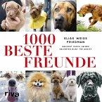 1000 beste Freunde (eBook, PDF)