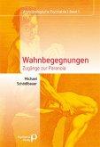 Wahnbegegnungen (eBook, ePUB)
