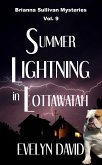 Summer Lightning in Lottawatah (eBook, ePUB)
