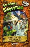 Umzingelt vom Preondactylus / Das geheime Dinoversum Bd.17 (eBook, ePUB)