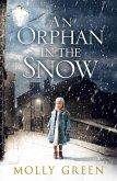 An Orphan in the Snow (eBook, ePUB)