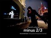 Minus 2/3 - The Invisible Flash (eBook, ePUB)