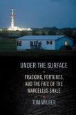 Under the Surface (eBook, PDF)