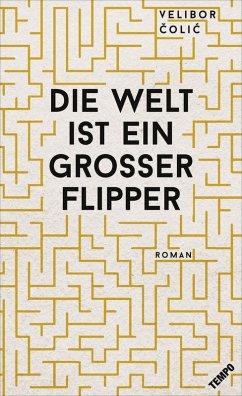 Die Welt ist ein großer Flipper (eBook, ePUB) - Colic, Velibor