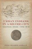 Urban Indians in a Silver City (eBook, ePUB)