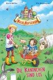 Die Kaninchen sind los / Villa Hufschuh Bd.3 (eBook, ePUB)