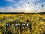 Erzgebirge 2018