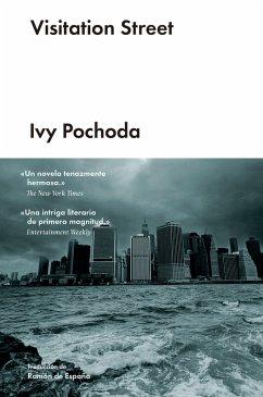 Visitation Street (eBook, ePUB) - Pochoda, Ivy