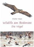 Wildlife am Bodensee