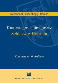 Kindertagesstättengesetz Schleswig-Holstein