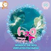 16: Wünsch' dir was / Verflixtes Fischmenü (MP3-Download)