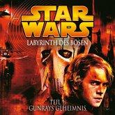 Labyrinth des Bösen - Teil 1: Gunrays Geheimnis (MP3-Download)