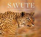 Savute: Botswana's Wildlife Kingdom