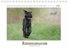 Riesenschnauzer - Riesen mit Herz und Seele (Ti...