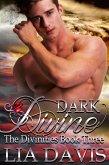 Dark Divine (eBook, ePUB)