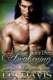 Divine Awakening (eBook, ePUB)