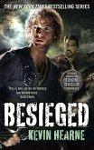 Besieged (eBook, ePUB)