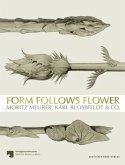 Form Follows Flower
