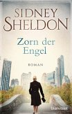 Zorn der Engel (eBook, ePUB)