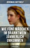 Wie fünf Mädchen im Branntwein jämmerlich umkommen (Historischer Roman) (eBook, ePUB)