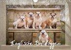 Englische Bulldoggen (Wandkalender 2018 DIN A4 quer)