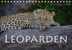 Leoparden - groß und klein (Tischkalender 2018 DIN A5 quer)