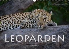 Leoparden - groß und klein (Wandkalender 2018 DIN A3 quer)