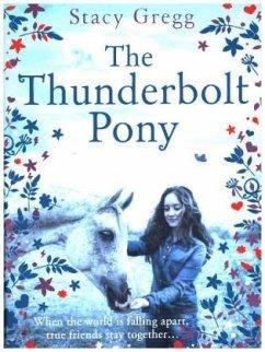 Thunderbolt Pony
