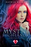Druidenblut / Mystic Highlands Bd.1 (eBook, ePUB)