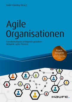 Agile Organisationen (eBook, ePUB)