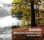 Grumsin (eBook, ePUB)