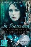 In Between. Das Geheimnis der Königreiche (eBook, ePUB)