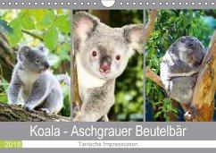 Koala - Aschgrauer Beutelbär 2018. Tierische Im...